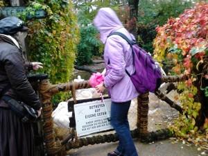 Die Pelikane wollen unsere Schirme...