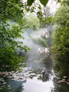 Romantischer Nebel? Mitnichten... unsere Nebelmaschine war der Grill. Aber schön ist es trotzdem.