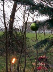 Der Ritualplatz - eine grüne Kugel für den noch schlafenden Frühling -